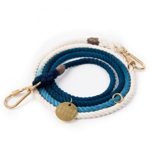 Indigo Obmre Leash